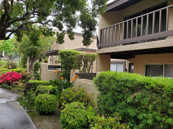 Looking for a beautiful place in Sierra Madre, CA, near to Caltech and JPL? Home Rental in Sierra Madre 1 - thumbnail
