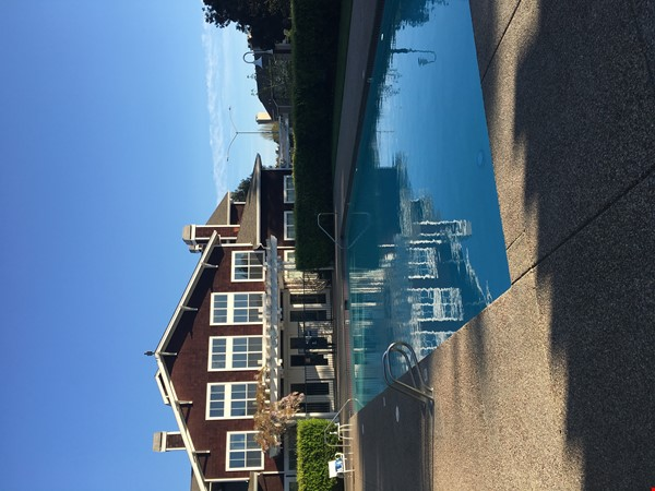Best of the Bay Area: quiet escape near the Richmond Marina! Home Rental in Richmond 2 - thumbnail