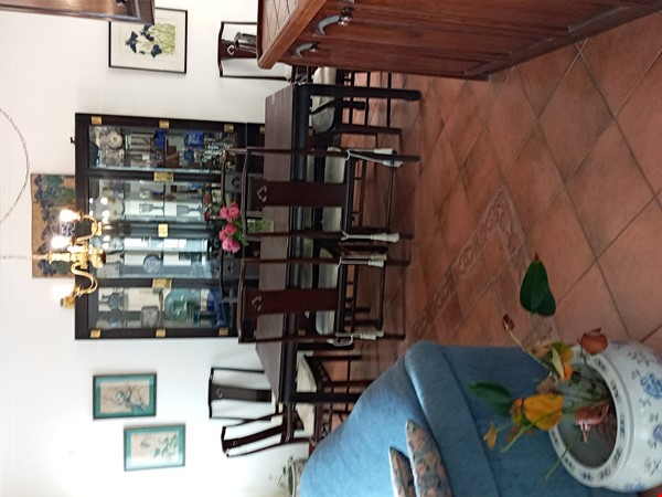 Beautiful 3 bedroom home on Mount Carmel in Haifa with view and garden Home Rental in ???? 1 - thumbnail