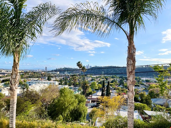 NEW Studio with Stunning L.A. Views! Home Rental in Los Angeles 0 - thumbnail