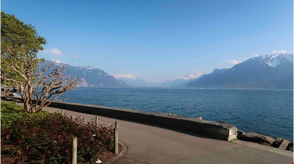 Looking for a beautiful place to live, close to lake, vineyard and mountain Home Rental in Vevey 0 - thumbnail