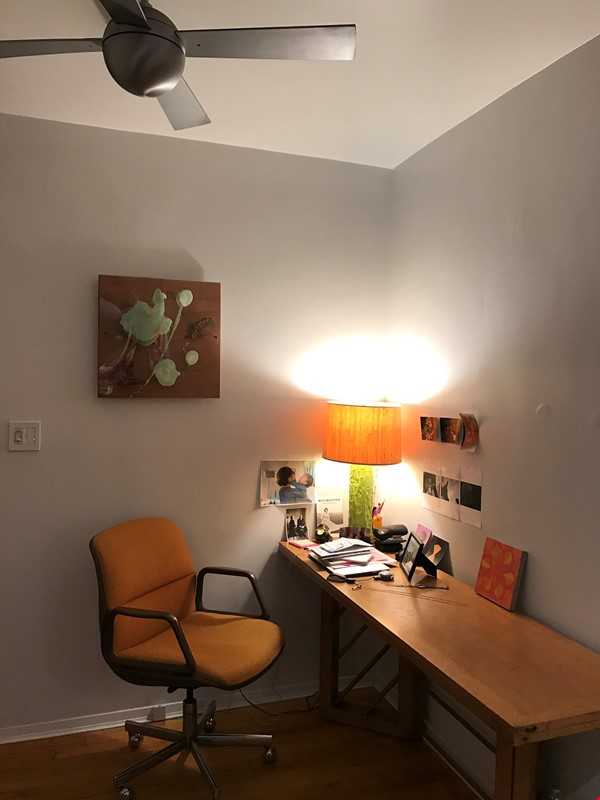 Steps from Central Park, place full of art and sun. Home Rental in New York 6 - thumbnail