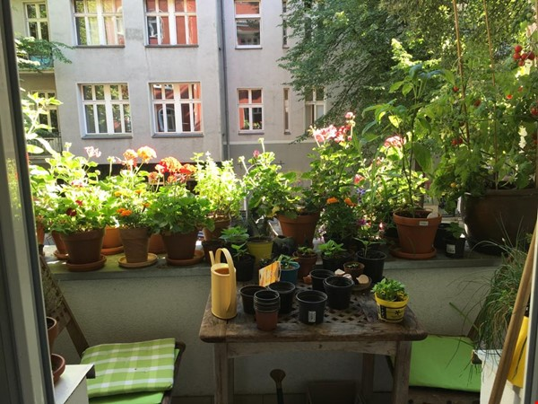 """Large 1 bedroom apartment in """"Kreuzkolln"""" close to canal and restaurants Home Rental in Berlin 1 - thumbnail"""