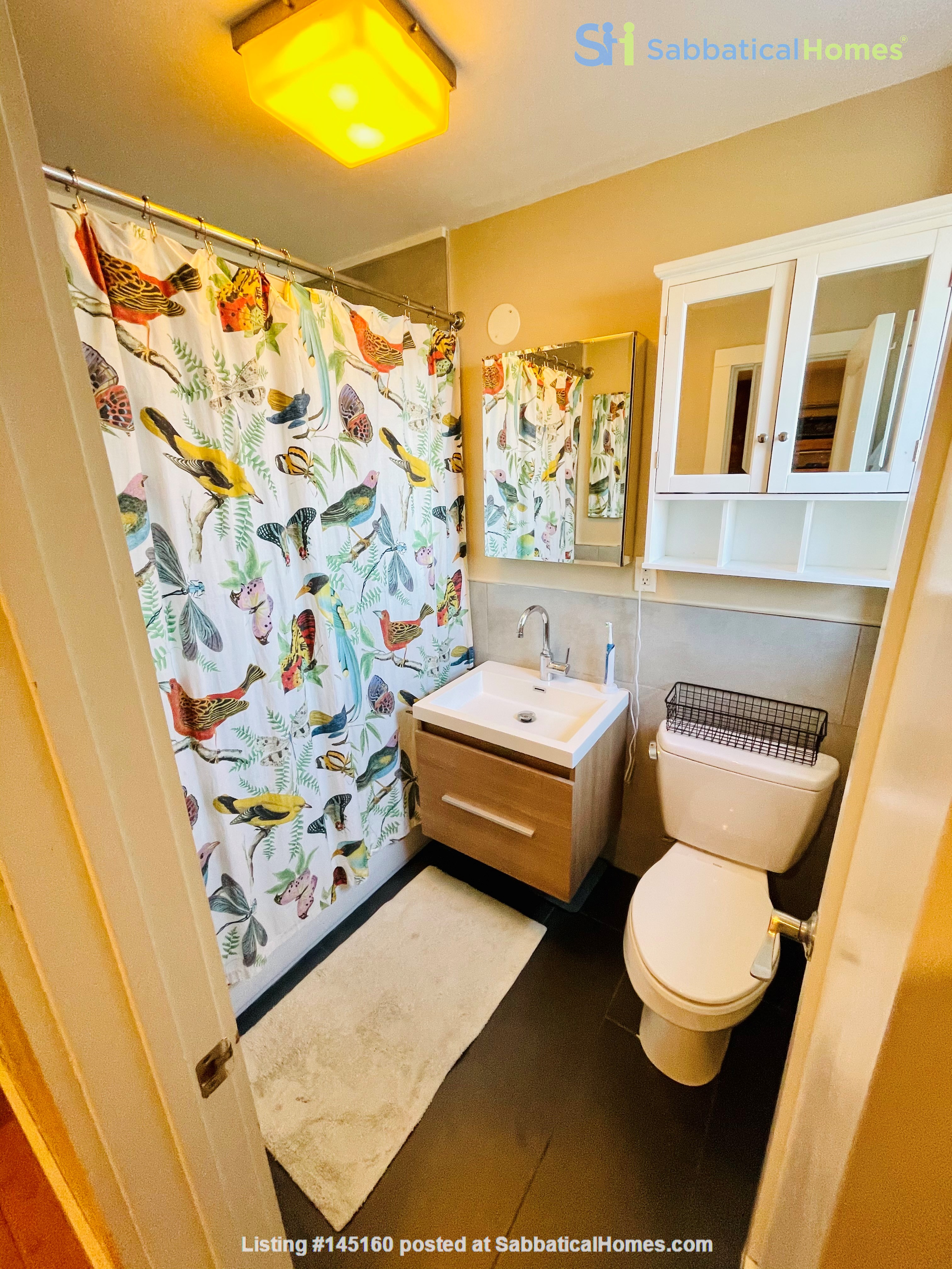 5br - Beautiful *NO FEE* Park Slope Townhouse w Private Yard Home Rental in Kings County, New York, United States 3