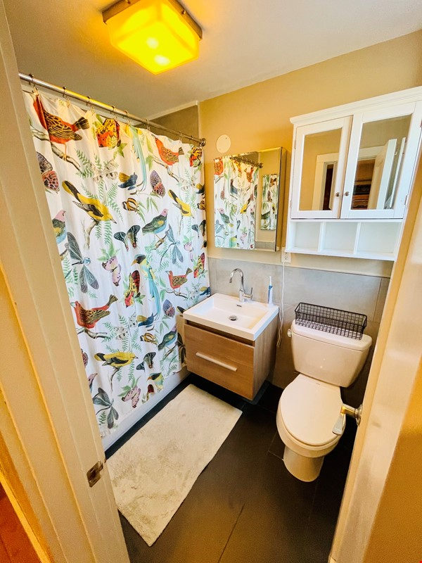 5br - Beautiful *NO FEE* Park Slope Townhouse w Private Yard Home Rental in  3 - thumbnail