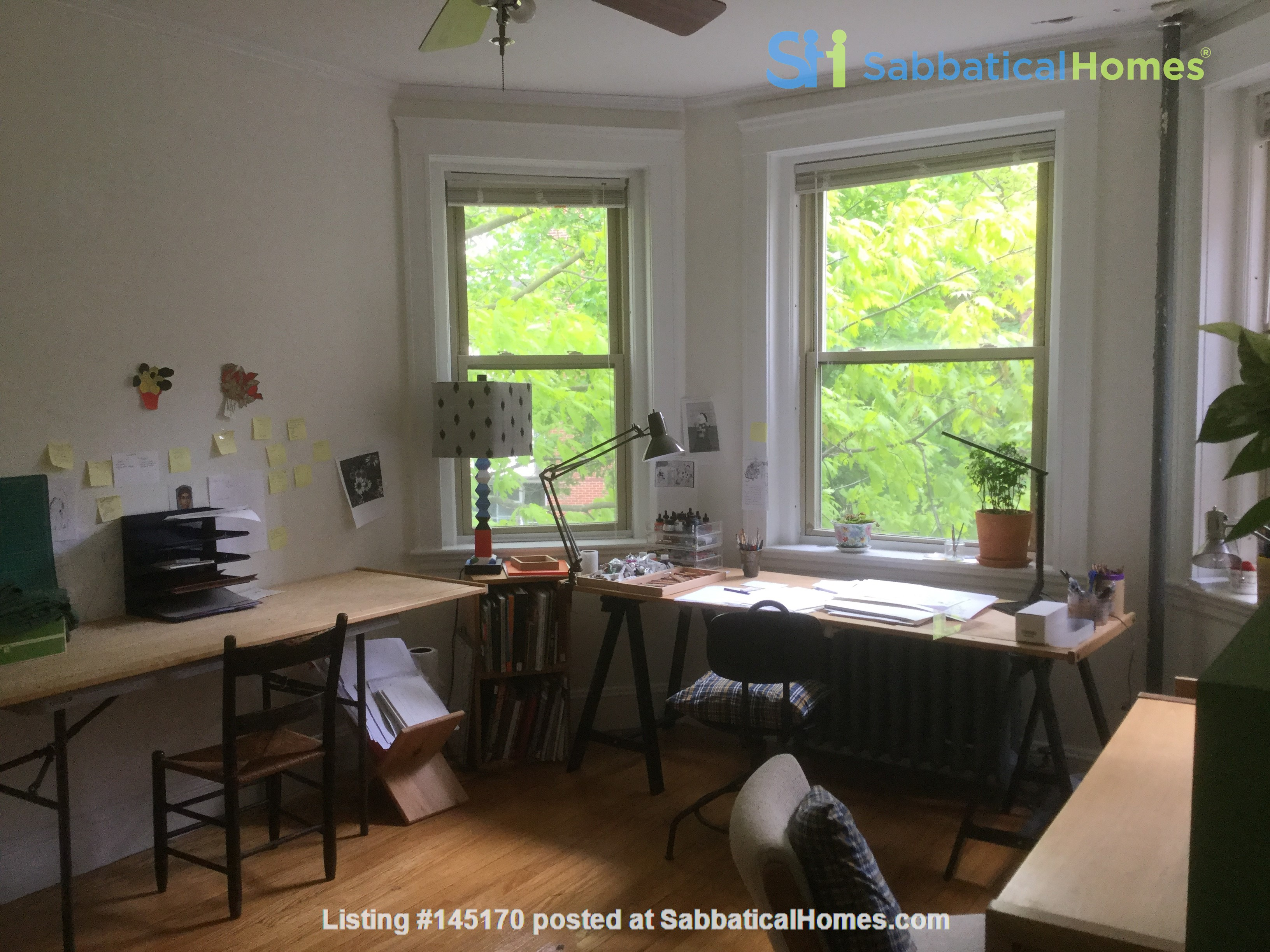 Sunny two-bedroom apartment near Harvard Square Home Rental in Cambridge, Massachusetts, United States 0