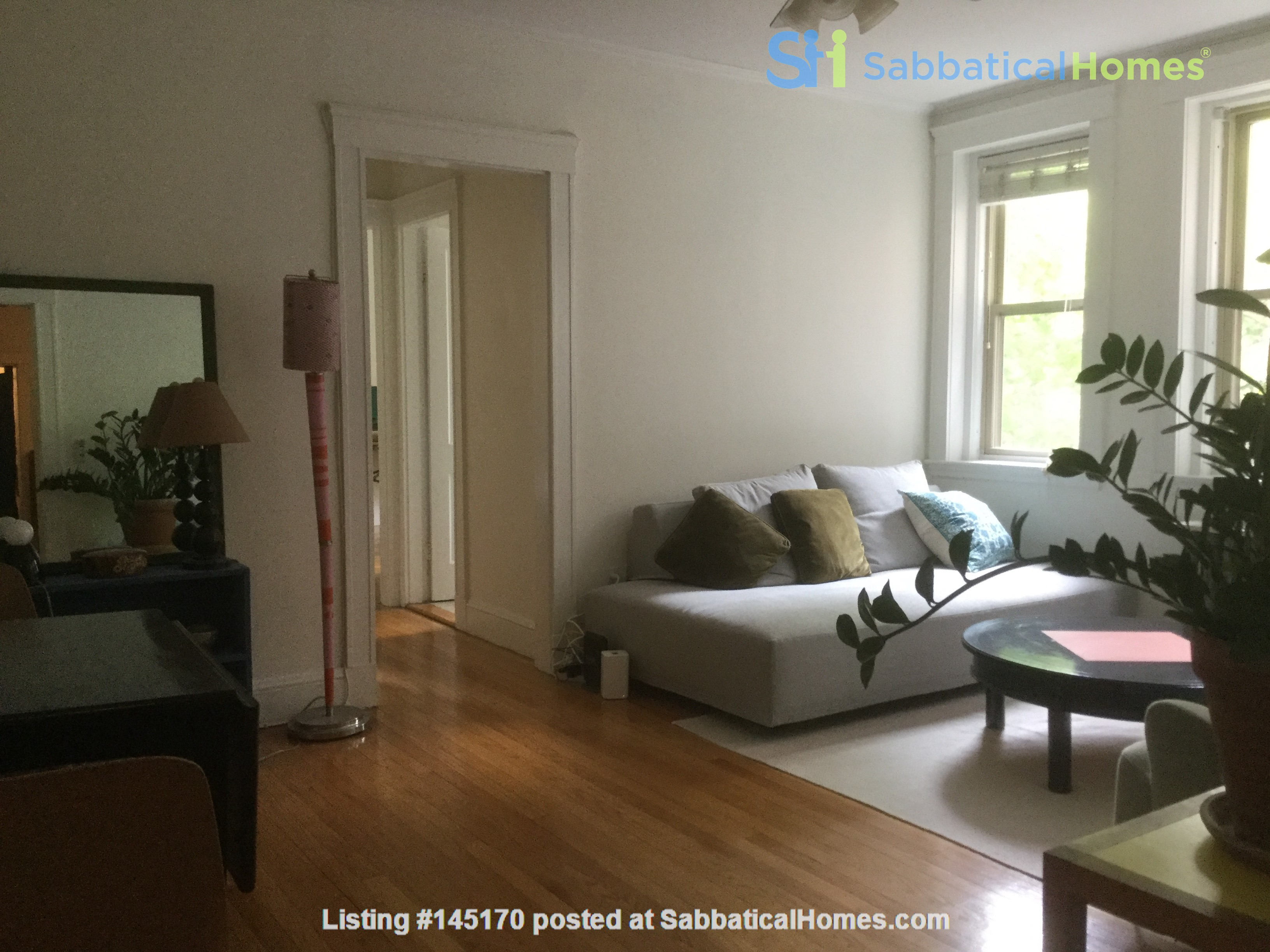 Sunny two-bedroom apartment near Harvard Square Home Rental in Cambridge, Massachusetts, United States 1