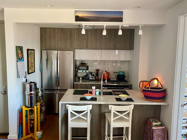 Beautiful, light filled 2 BR, 2 BA + Terrace & Indoor Parking in Brooklyn Home Rental in  4 - thumbnail