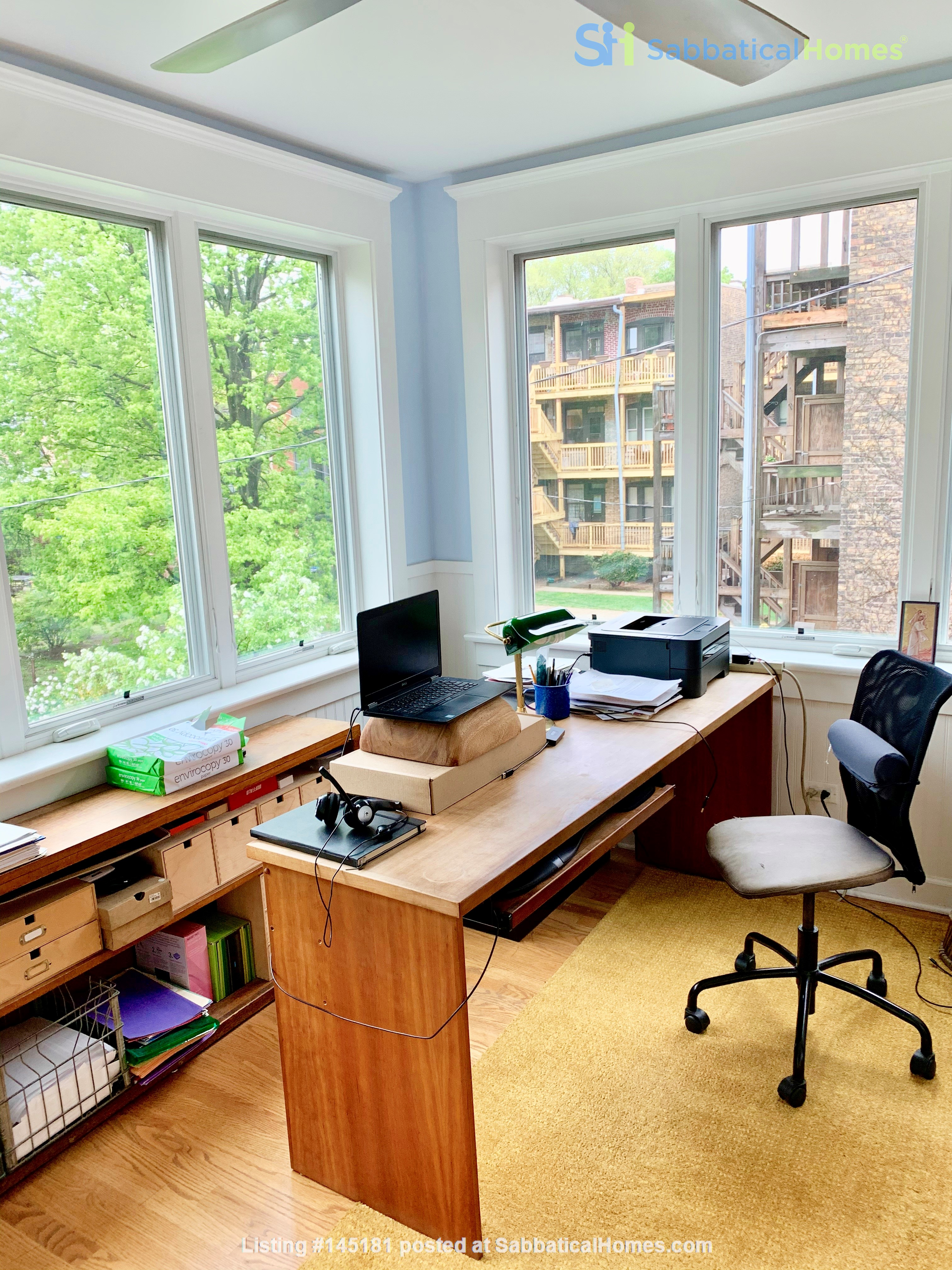 Beautiful Hyde Park Home Near UChicago, Lake, Loop Home Rental in Chicago, Illinois, United States 6