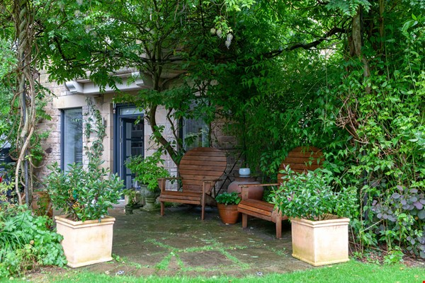 Stunning House for a fish, gardener and architectural lover. Home Rental in  9 - thumbnail