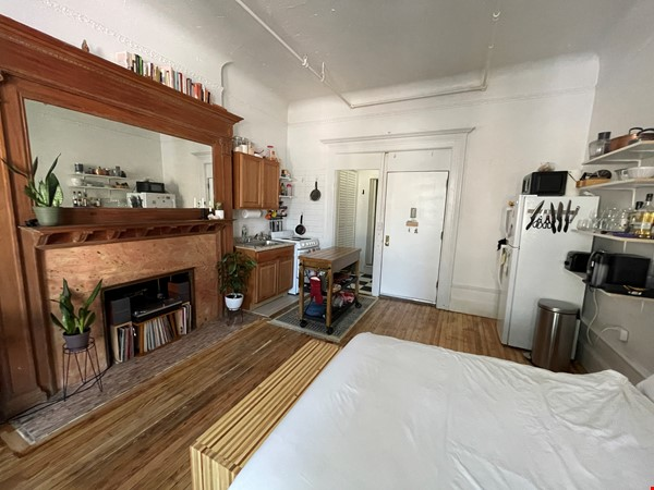 Historic South Harlem Studio with Balcony, short walk to Central Park! Home Rental in New York 2 - thumbnail