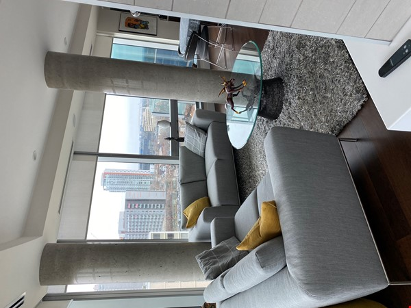 Gorgeous, spacious condo close to universities, hospitals and downtown Home Rental in Edmonton 2 - thumbnail