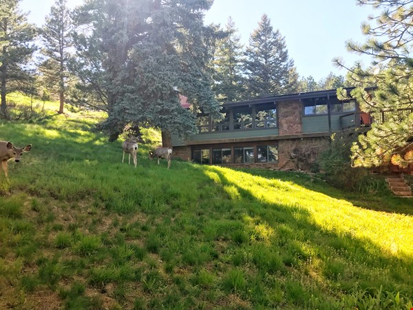 Lovely Mountain Home for Rent Home Rental in Boulder 7 - thumbnail