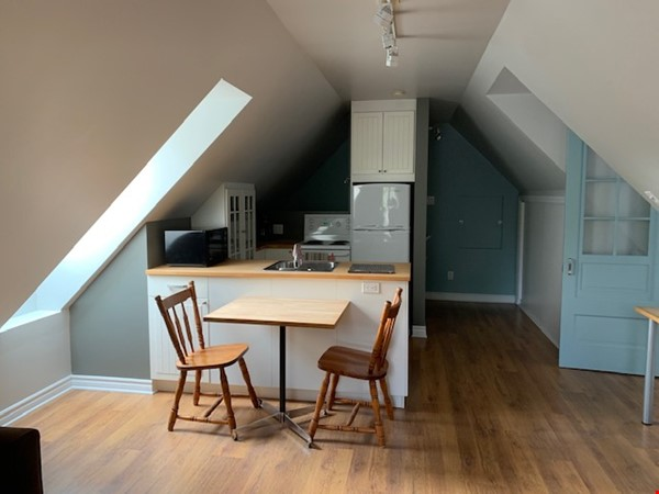 Beautiful loft / studio Home Rental in Gatineau 1 - thumbnail
