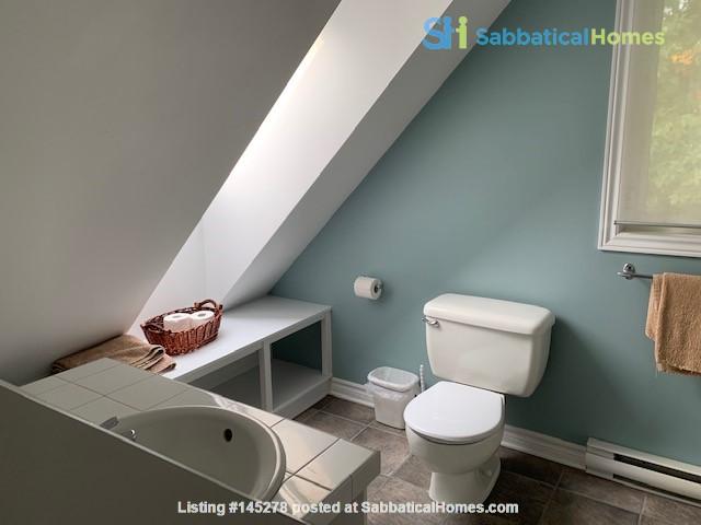 Beautiful loft / studio Home Rental in Gatineau, Québec, Canada 3
