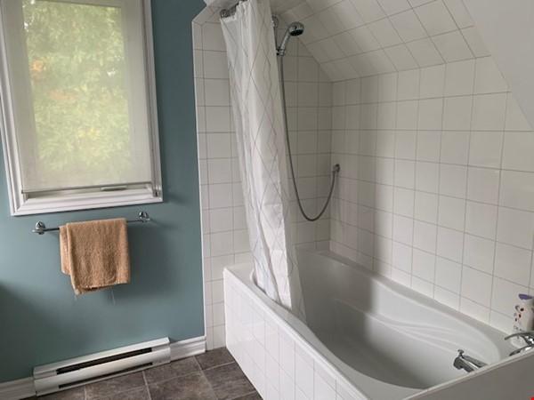 Beautiful loft / studio Home Rental in Gatineau 4 - thumbnail