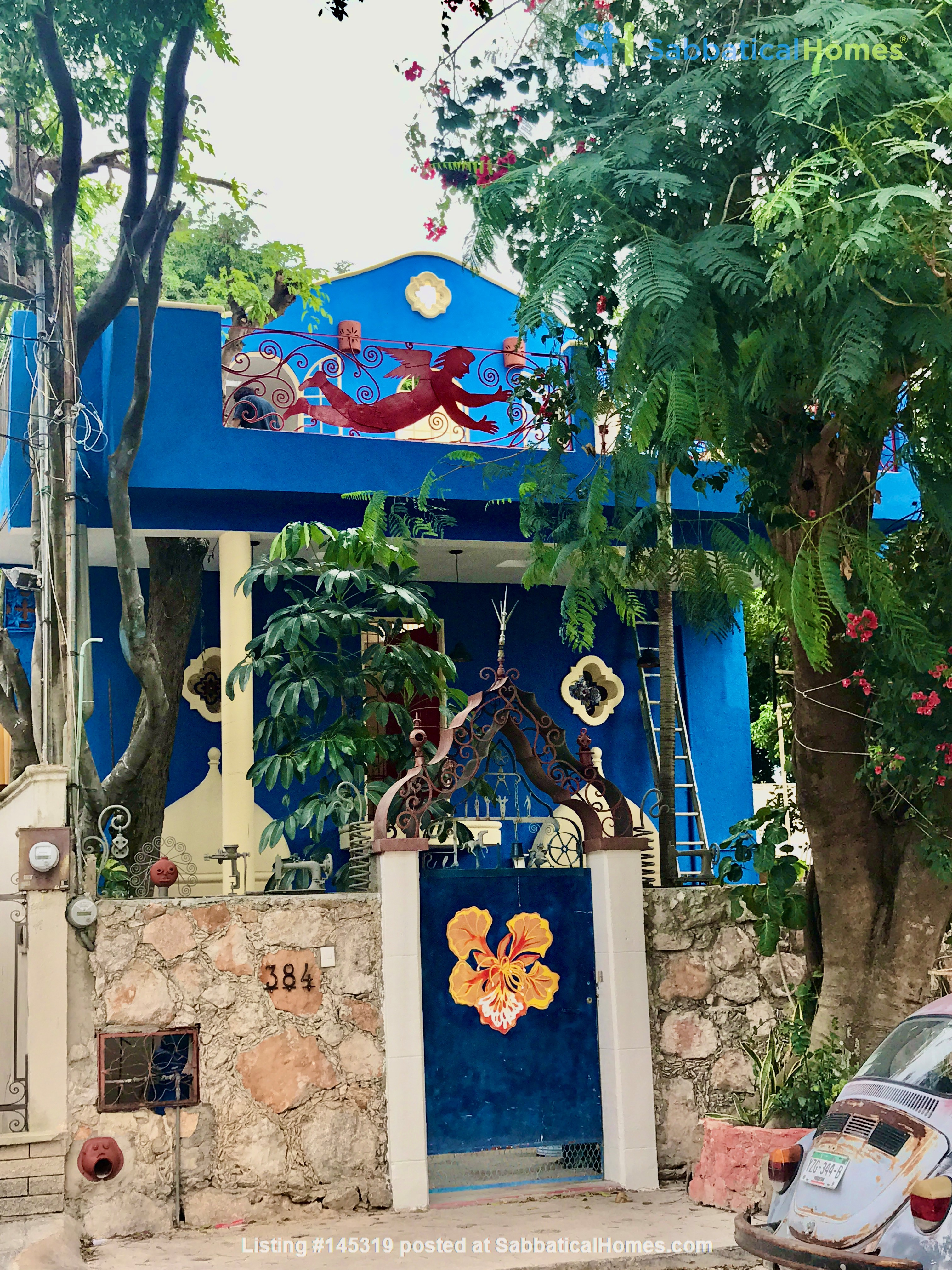 Beautiful Artists' Home and Urban Paradise with Pool in Central Mérida Home Rental in Mérida, Yucatán, Mexico 0