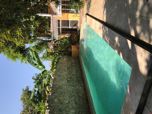 Beautiful Artists' Home and Urban Paradise with Pool in Central Mérida Home Rental in Mérida 1 - thumbnail