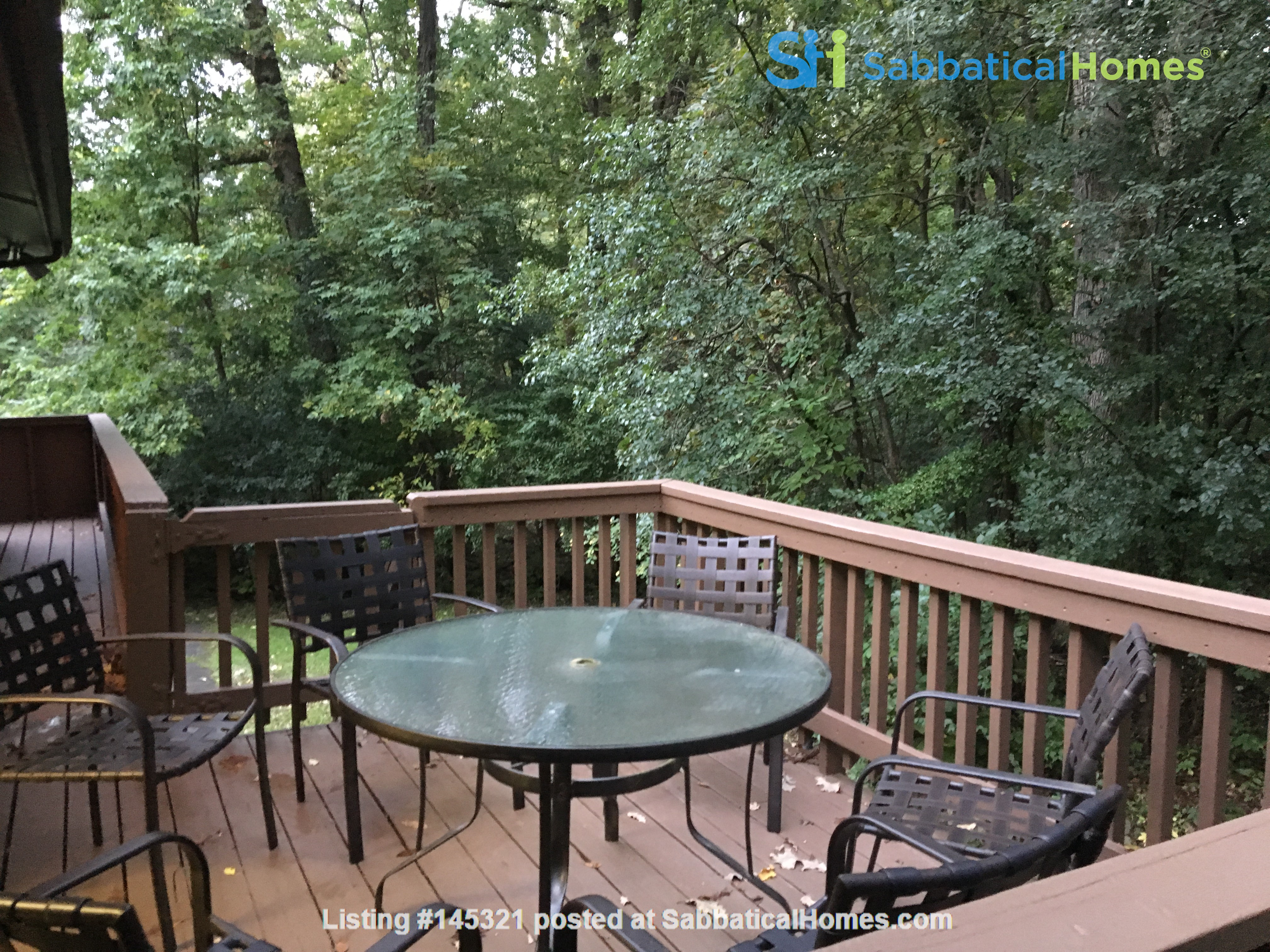 Lovely four bedroom house, wooded setting near UM Central campus & hospital Home Rental in Ann Arbor, Michigan, United States 3