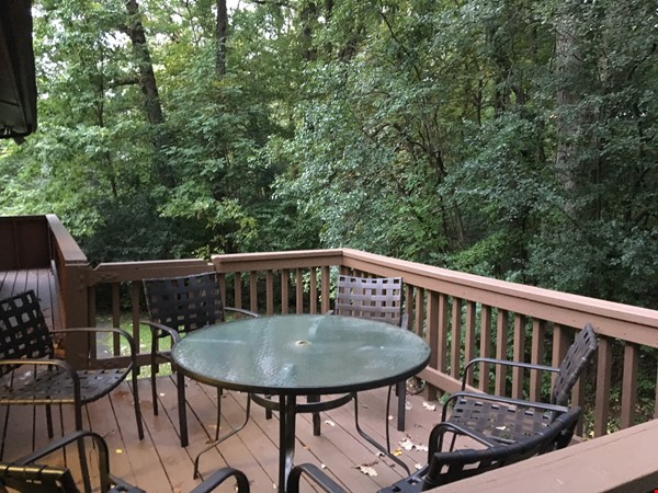 Lovely four bedroom house, wooded setting near UM Central campus & hospital Home Rental in Ann Arbor 3 - thumbnail