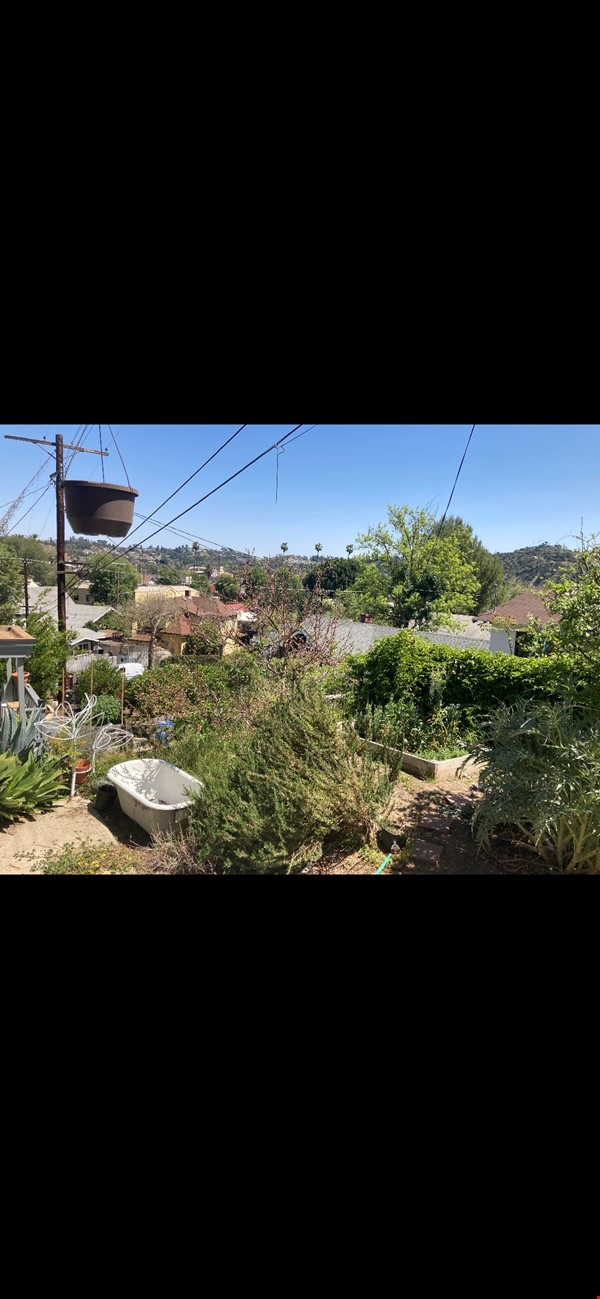 Three Bedroom home with detached office Home Exchange in Los Angeles 8 - thumbnail