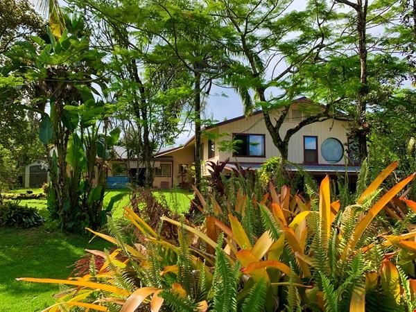 Coastal Kaloli Point Artist Residence Eco-Farm Home Rental in Keaau 3 - thumbnail
