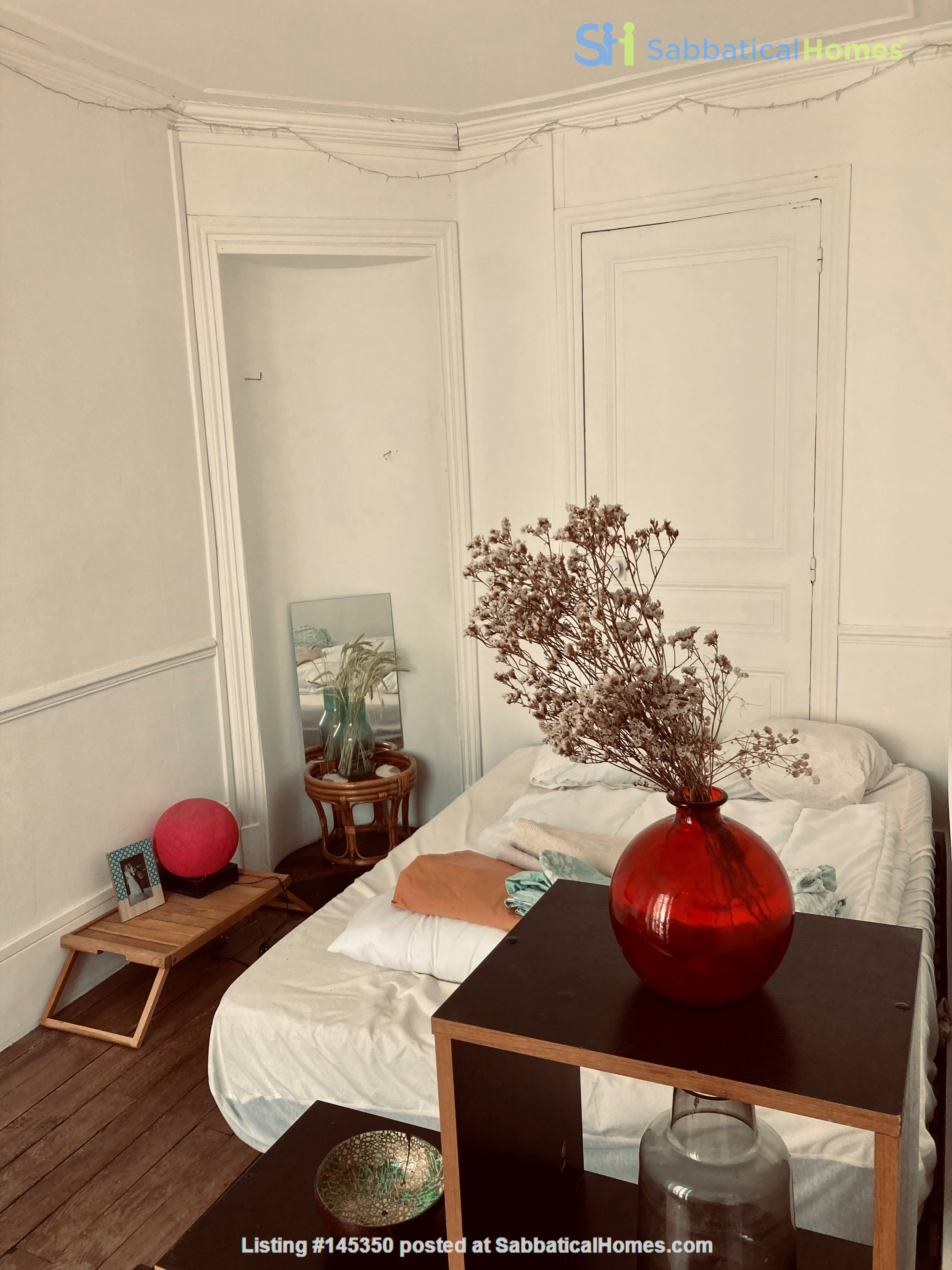 Charming one-bedroom apartment near Montmartre Home Rental in Paris, Île-de-France, France 6