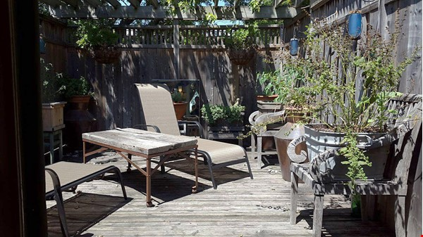 Country in the City! Near nature and also downtown Home Rental in Toronto 7 - thumbnail