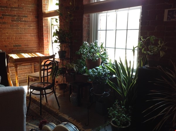 Fully furnished condo - a perfect haven for a single person or couple. Home Rental in Lowell 2 - thumbnail