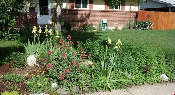 Well-kept house, large yard, pet friendly, walk to CU campus, trails. Home Rental in Boulder 6 - thumbnail