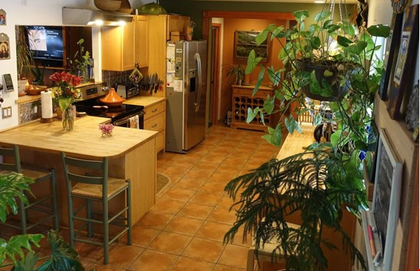 Well-kept house, large yard, pet friendly, walk to CU campus, trails. Home Rental in Boulder 1 - thumbnail