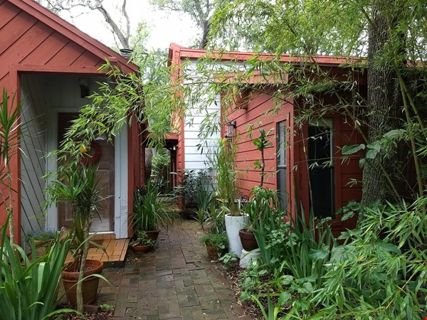 Rustic Modern w/open floor plan, resting in bamboo, palms, & tropical fruit Home Rental in Tampa 1 - thumbnail