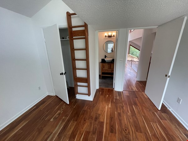Rustic Modern w/open floor plan, resting in bamboo, palms, & tropical fruit Home Rental in Tampa 6 - thumbnail