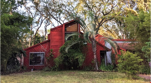 Rustic Modern w/open floor plan, resting in bamboo, palms, & tropical fruit Home Rental in Tampa 0 - thumbnail