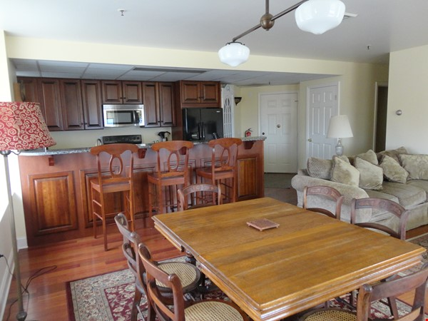 Furnished Condo*Lake & City Views*Walkable to Campus' & UVMMCl*Heat/AC Incl Home Rental in Burlington 4 - thumbnail
