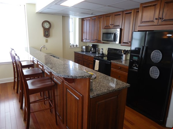 Furnished Condo*Lake & City Views*Walkable to Campus' & UVMMCl*Heat/AC Incl Home Rental in Burlington 2 - thumbnail