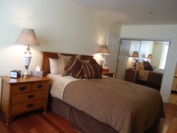 Furnished Condo*Lake & City Views*Walkable to Campus' & UVMMCl*Heat/AC Incl Home Rental in Burlington 5 - thumbnail