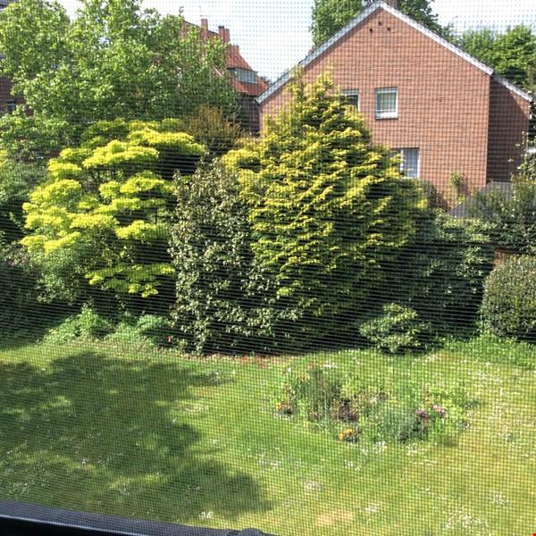 Lovely quiet studio in idylic Muenster Mauritz Home Rental in Münster 8 - thumbnail