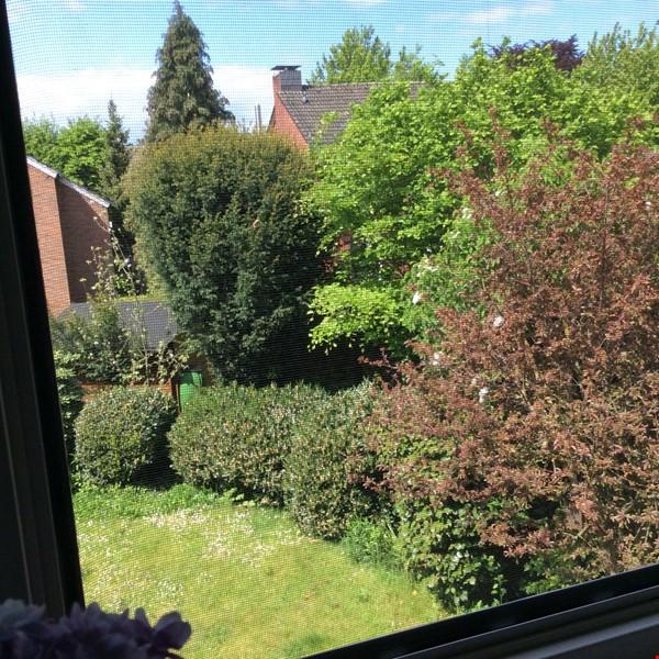 Lovely quiet studio in idylic Muenster Mauritz Home Rental in Münster 9 - thumbnail