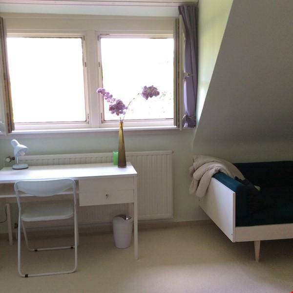 Lovely quiet studio in idylic Muenster Mauritz Home Rental in Münster 7 - thumbnail