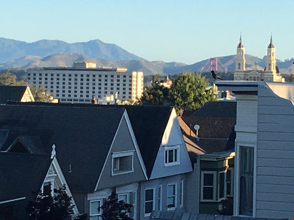 Beautifully restored, light filled Victorian in terrific neighborhood Home Rental in SF 6 - thumbnail