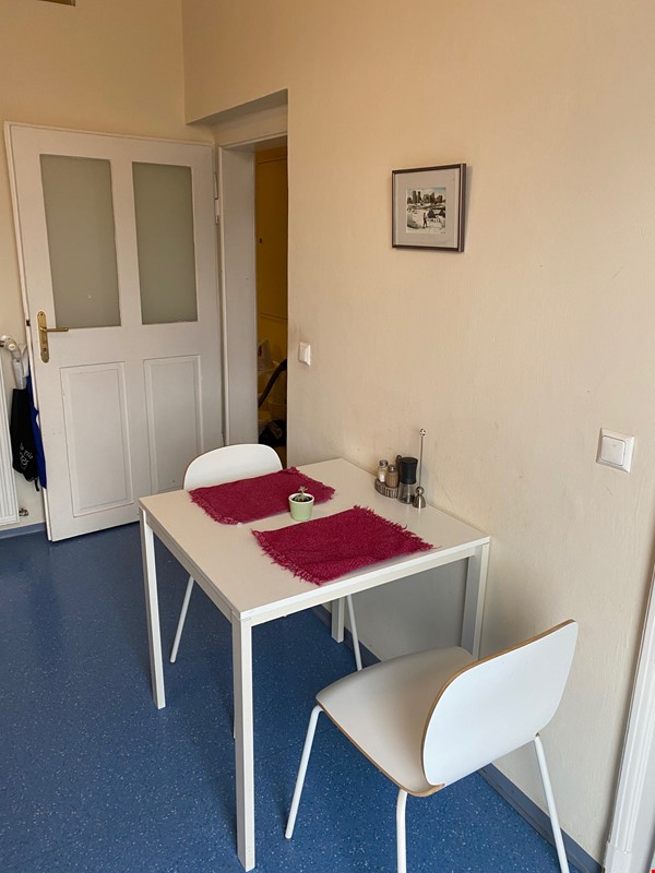 Spacious, Historical Apartment in Central Graz, Surrounded by Parks! Home Rental in Graz 6 - thumbnail