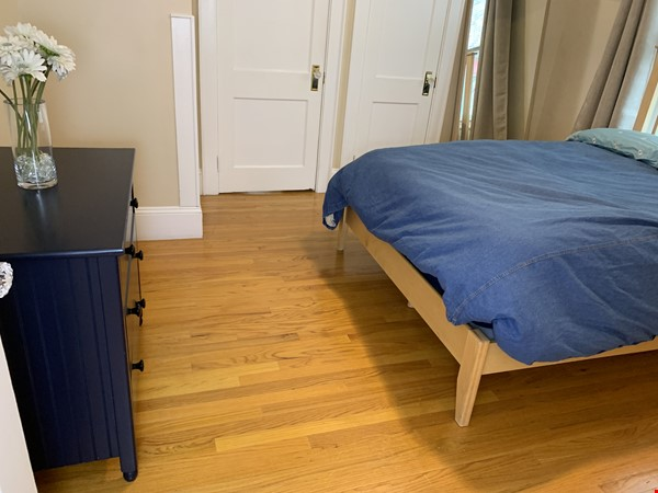 Warm, bright, safe furnished apartment near Harvard and MIT Belmont Schools Home Rental in Belmont 8 - thumbnail