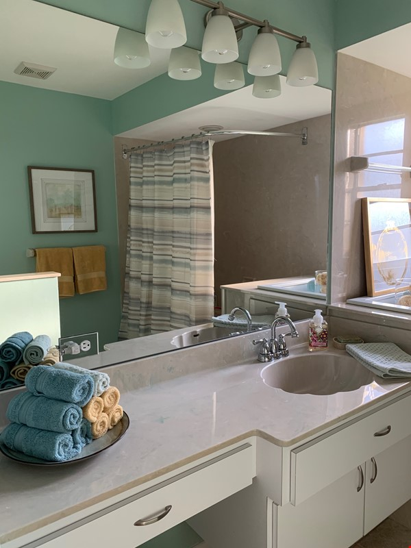 Gorgeous House for Rent near Dunedin Causeway Home Rental in Palm Harbor 9 - thumbnail