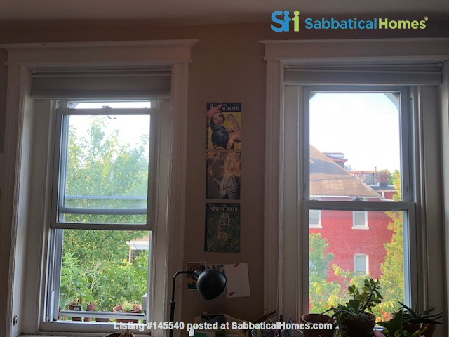 Columbia Heights DC Lovely Third Floor Home Rental in Washington, District of Columbia, United States 5