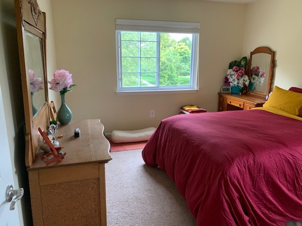 Furnished one-bedroom apartment near UM central campus Home Rental in Ann Arbor 3 - thumbnail