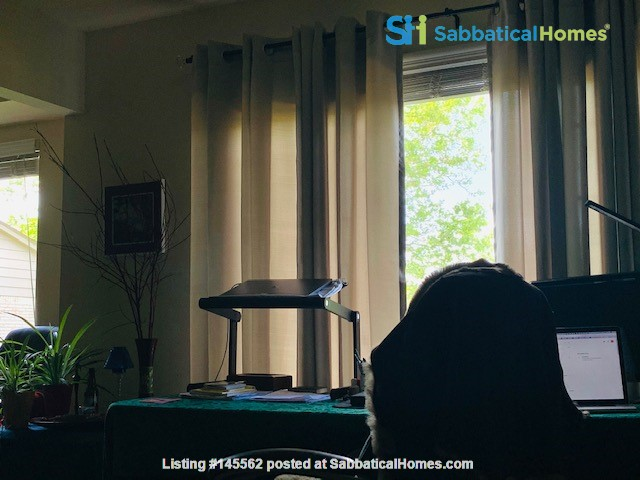 Furnished one-bedroom apartment near UM central campus Home Rental in Ann Arbor, Michigan, United States 2