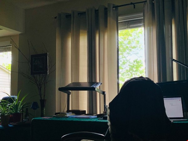 Furnished one-bedroom apartment near UM central campus Home Rental in Ann Arbor 2 - thumbnail