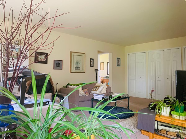 Furnished one-bedroom apartment near UM central campus Home Rental in Ann Arbor 1 - thumbnail