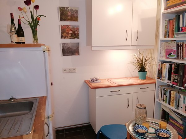 Grunewald apartment with large garden, 6 minutes by S-Bahn from city west Home Rental in Berlin 4 - thumbnail